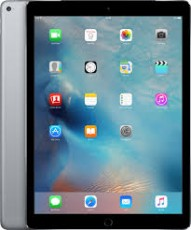 APPLE IPAD PRO 4G 256 GB SPACE GRAY 12,9 (APML2L2NF)