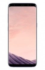 SAMSUNG S8 ORCHID GREY 64639435 (PXSAMG950P)