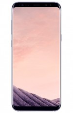 SAMSUNG S8 PLUS ORCHID GREY 64639438 (PXSAMG955P)